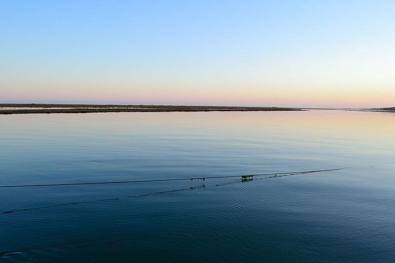 Ria Formosa, Tavira