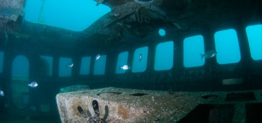 ocean-revival-park-algarve